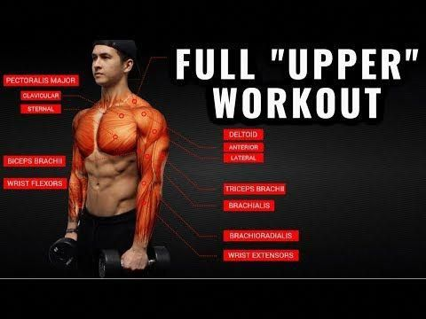 best exercise fitness tips mensworkouts  upper body