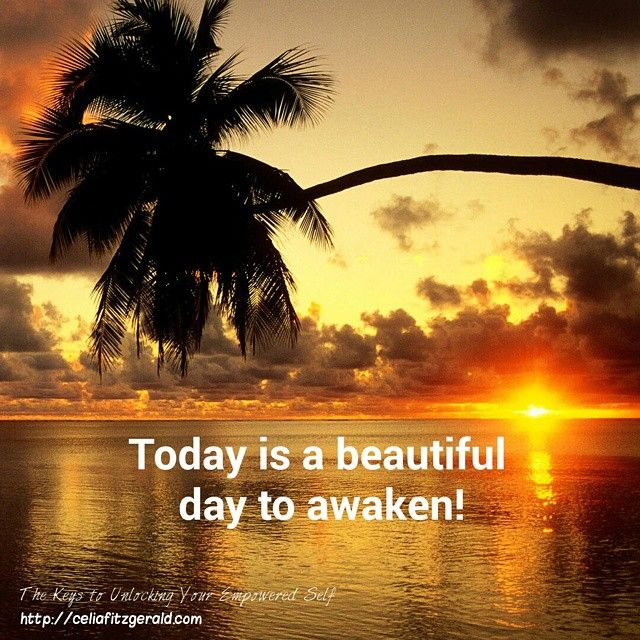 Today is a beautiful day to awaken! #celiafitzgerald #author #TheKeysToUnlockingYourEmpoweredSelf #today #presence #consiousness #awareness #beautiful #world #sunset #live #life #love #peace #magic #thekeys #truth
