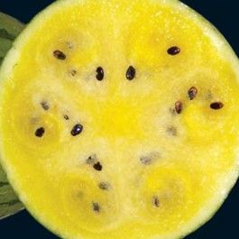 Yellow flesh watermelon--so many interesting varieties are ...