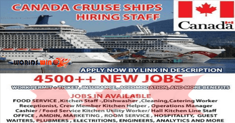 Canada Cruise Ships Built To Work Like Floating Hotels Cruise - What is it like working on a cruise ship