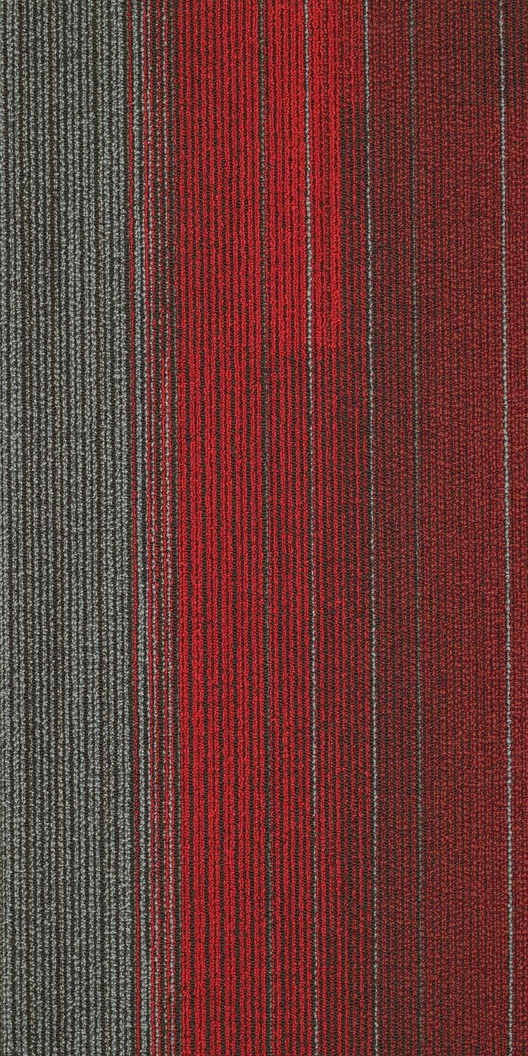Home Shaw Contract Textured carpet, Rugs on carpet