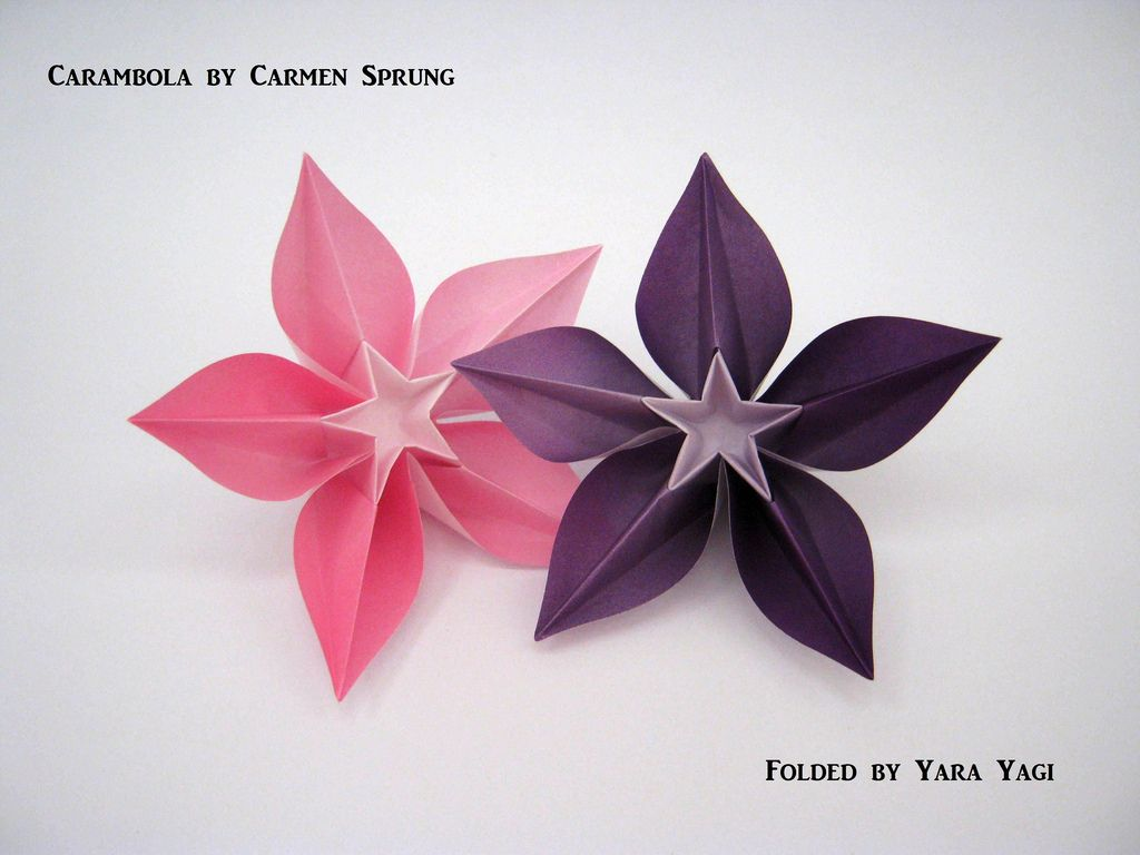 Carambola Flowers Origami Pinterest Flowers And Origami
