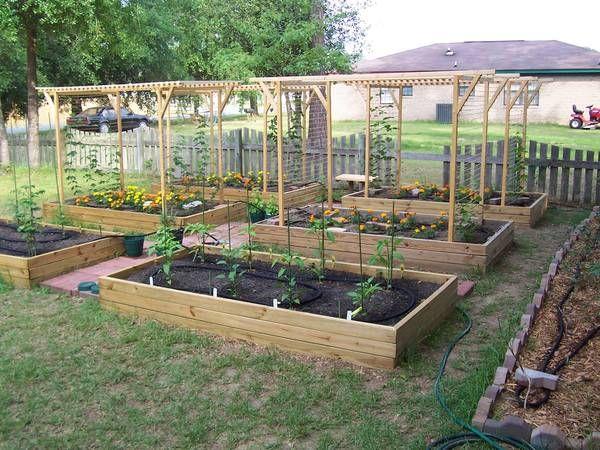Trellis Design Question Garden Planning Raised Garden Garden Beds