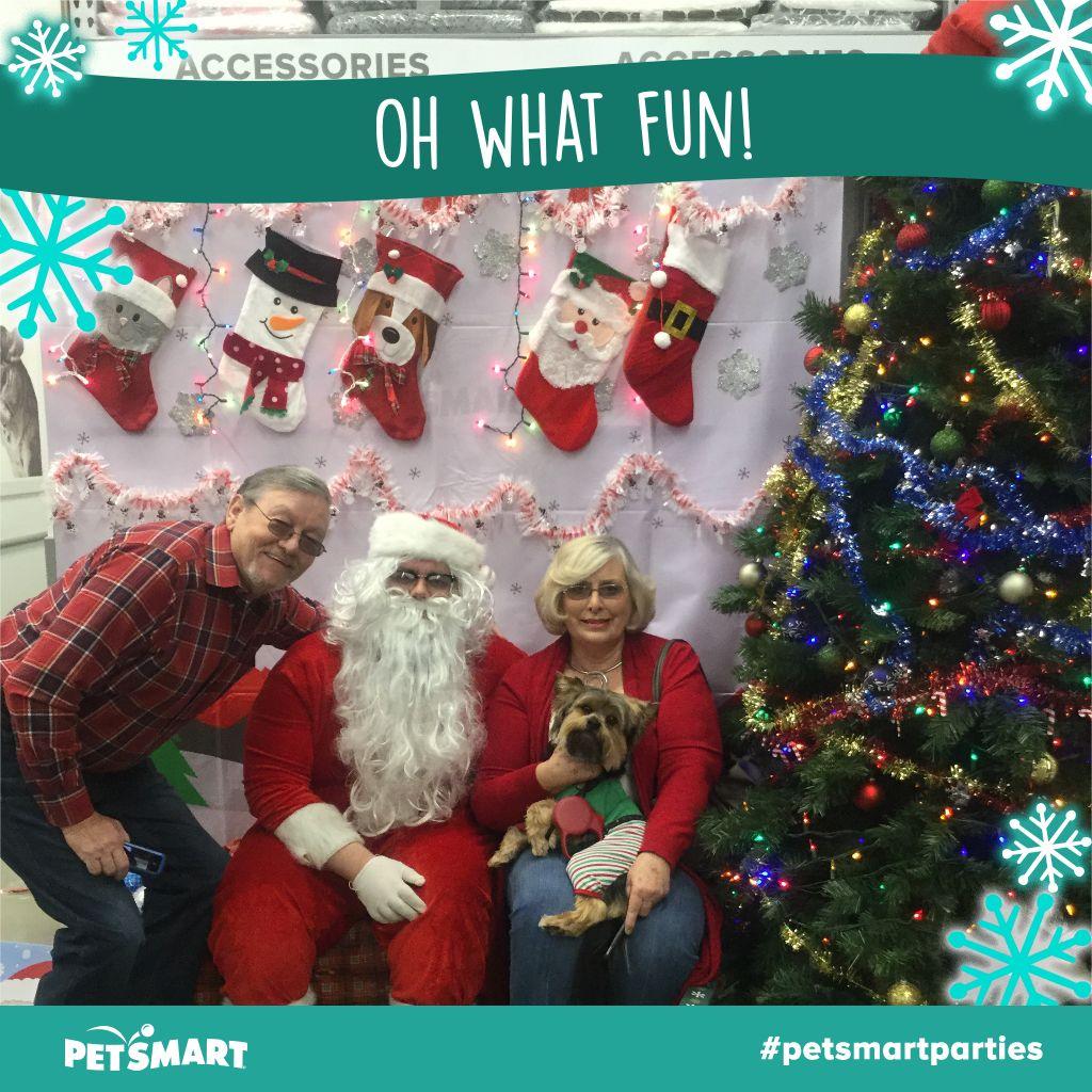 Here S My Pet Photo Christmas Fun Animal Photo Petsmart