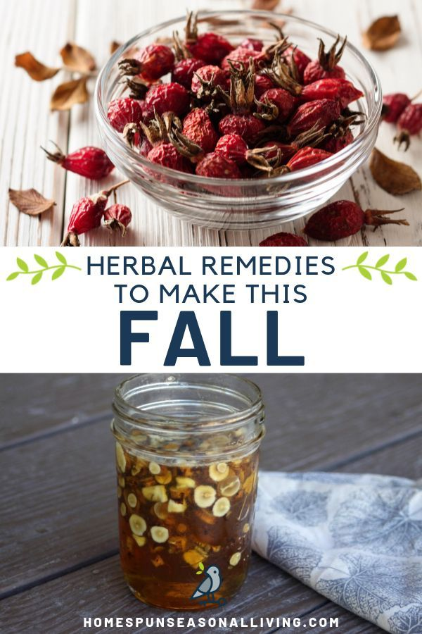 Make these Autumn Herbal Remedies from Roots & Fruits | Homespun Seasonal Living