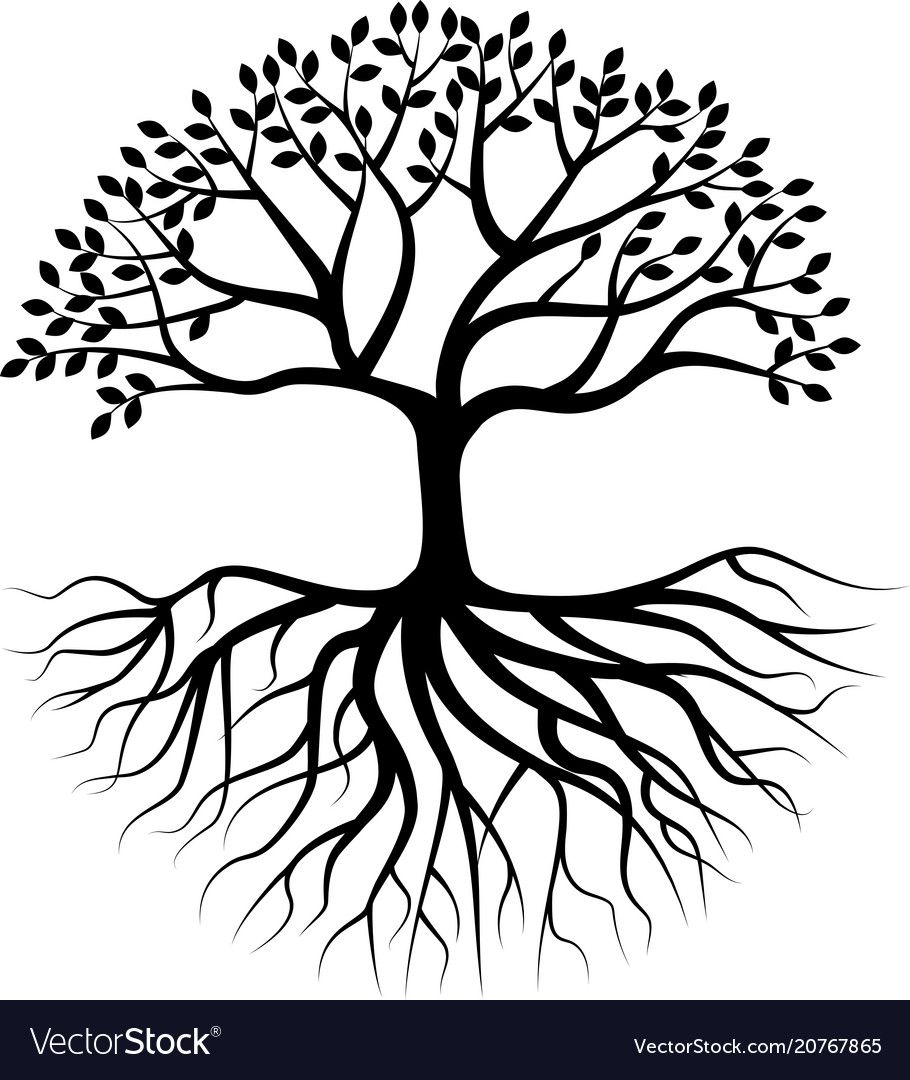 Tree silhouette with root Royalty Free Vector Image Tree