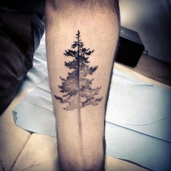 Black And Grey Tree Tattoo On Forearm Pine Tattoo Tattoos Tree Tattoo Designs