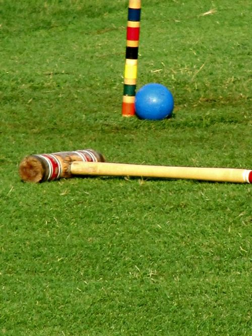 Pine Cones and Acorns, a great game of croquet.