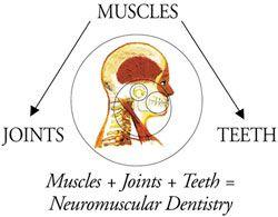 Neuromuscular Dentistry Dentistry Migraine Treatment Neuromuscular