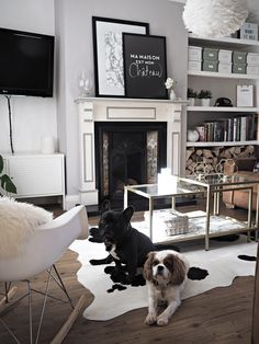 1000 Ideas About Cowhide Rug Decor On Pinterest Living