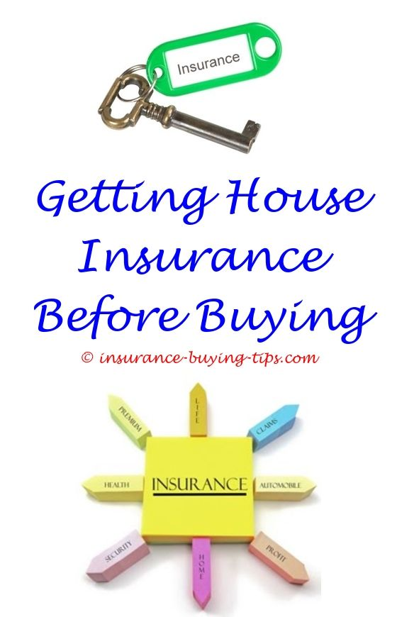 Usaa Car Insurance Quote Best Buying Two Pet Insurance Policies For The Same Dog  Best Buy Phone . Decorating Design