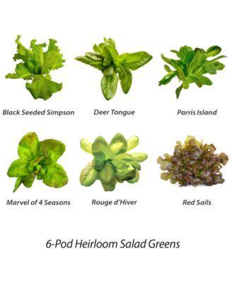 Aerogarden Heirloom Salad Greens 6 Pod Refill Kit In 2019 400 x 300