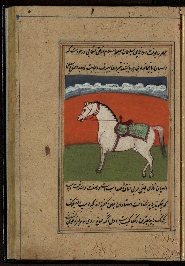 El libro de los caballos — Visor — Biblioteca Digital Mundial