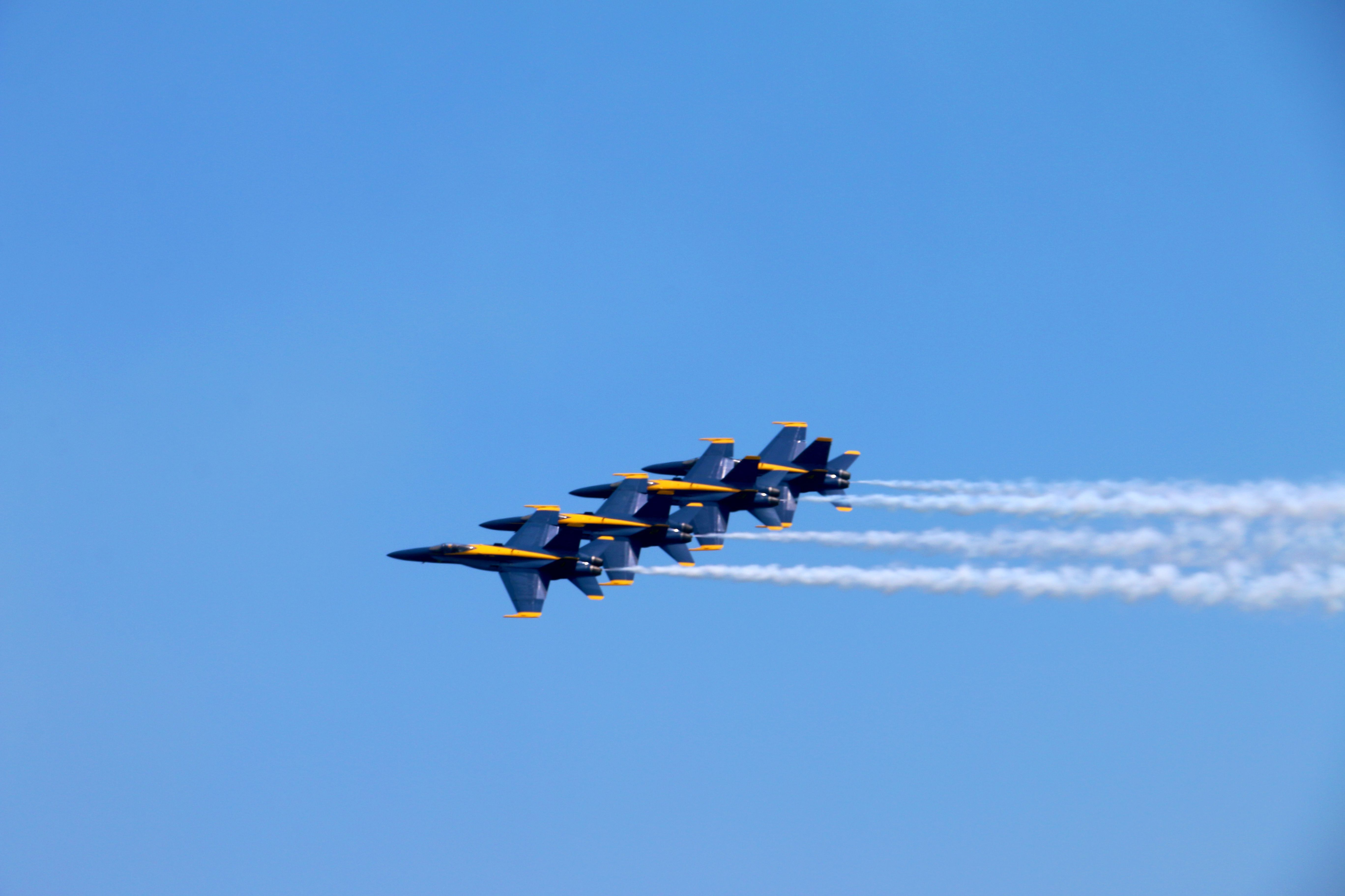 Hit the beach for our annual Blue Angels Air Show, a can't