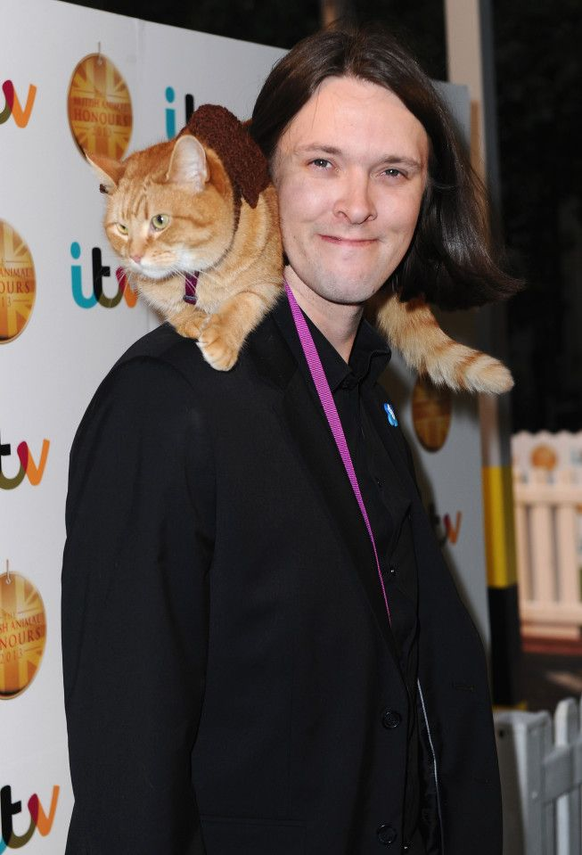 When Is A Streetcat Named Bob Out Who S In The Cast Is There A Trailer And What S It All About