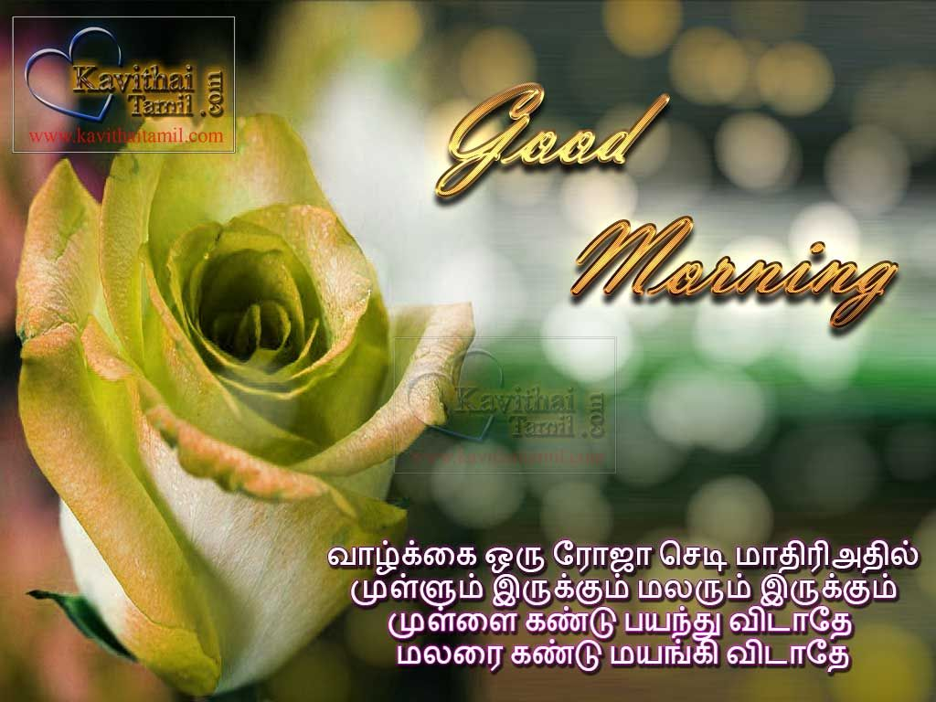 Mtovational and inspirational tamil good morning quotes kavithai mtovational and inspirational tamil good morning quotes kavithai greetings for wishing friends and family with super kristyandbryce Gallery