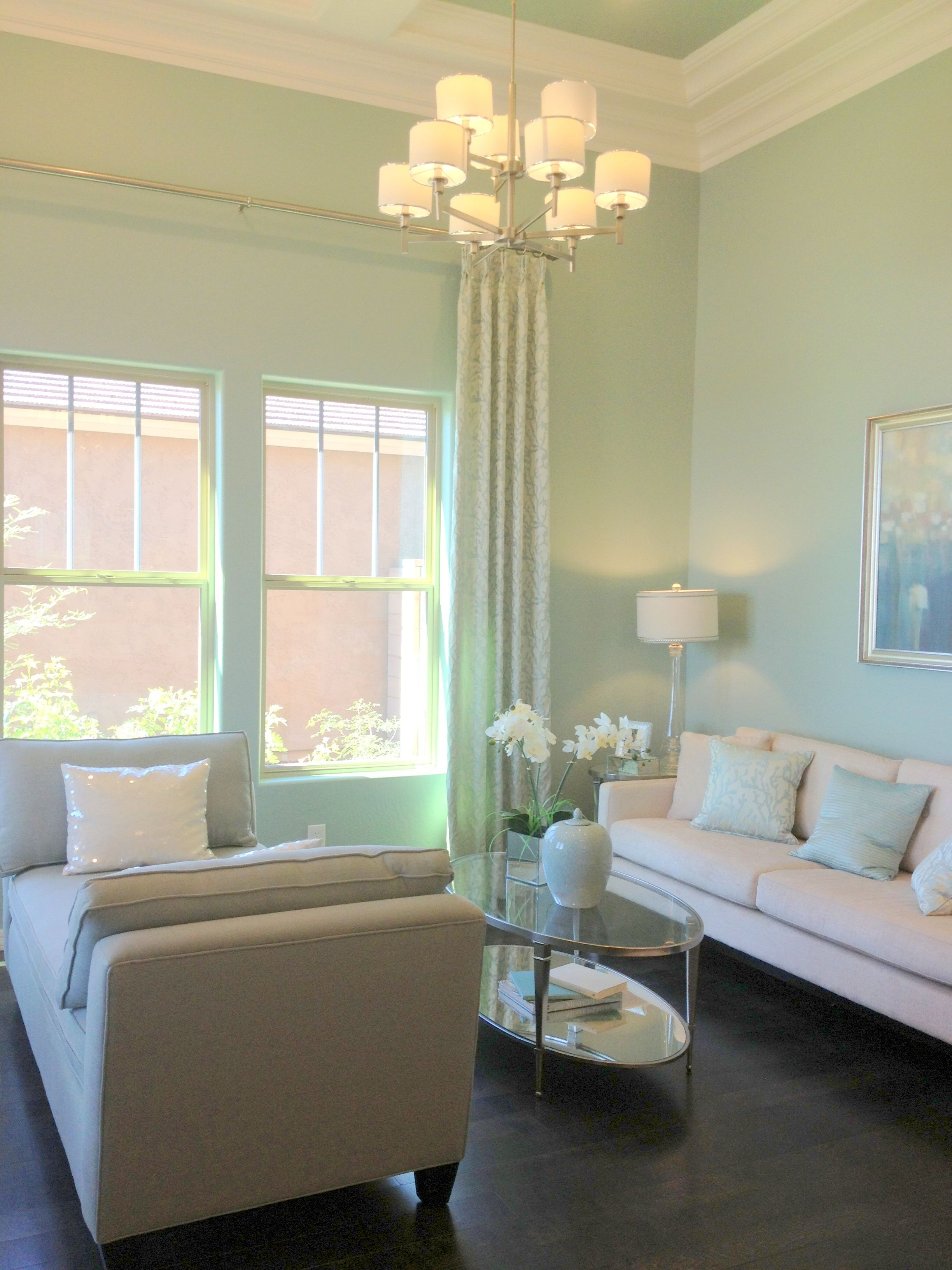 mint living room color...this screams to me! Love it