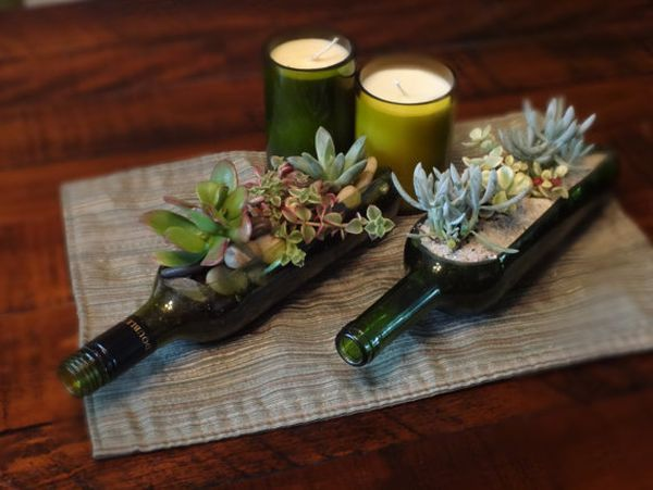 Wine Bottle Garden Succulent Planter Kit   Includes Everything You Need