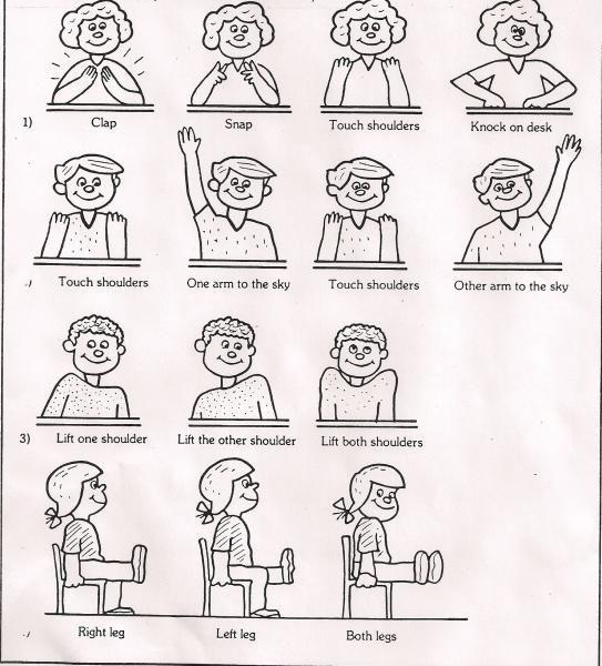Senior Chair Exercises Printable Charts Senior Fitness Flexibility Workout Exercise