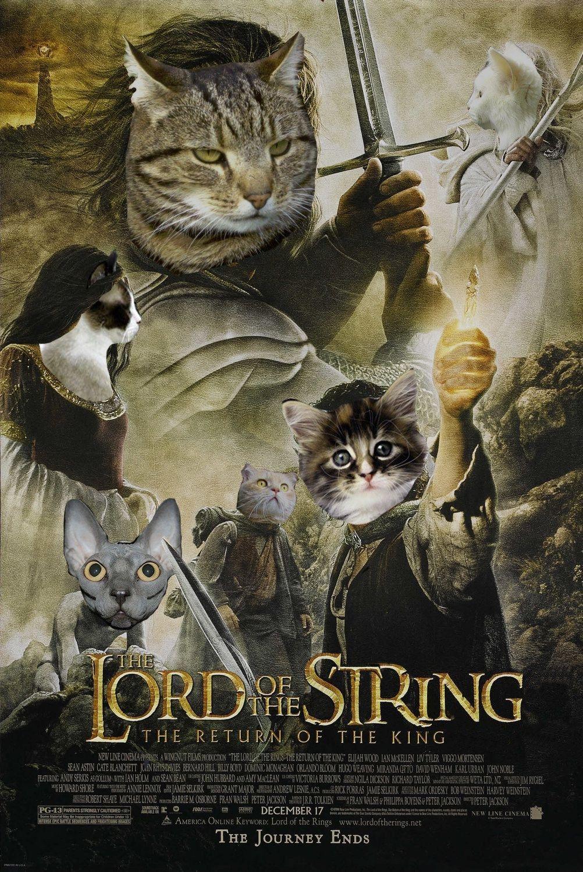 Cat Movie Poster Parody Google Search Kings Movie Cat Movie Movie Posters