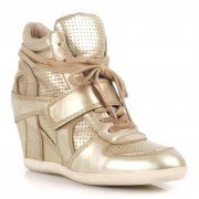 Gold Rush! ASH metallic numbers launch online! #SS13