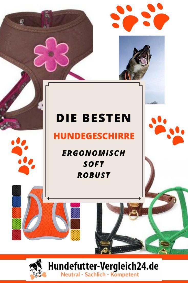 Hundegeschirre Mussen Gut Passen Und Sollten Ergonomisch Soft Robust Und Auch Hubsch Sein Schau Dir Hier Die Besten Hundegesch Hunde Futter Hundefutter Hunde