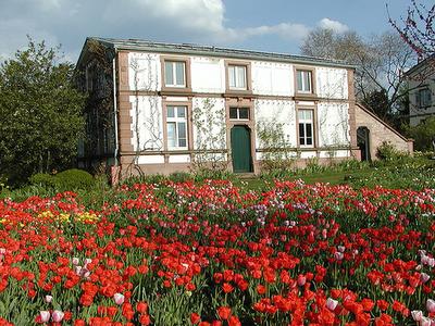 FOTOS ver: Jardines alemanes Garten