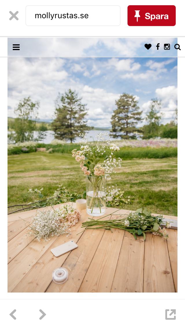 Swedish Summer at it's prime😊