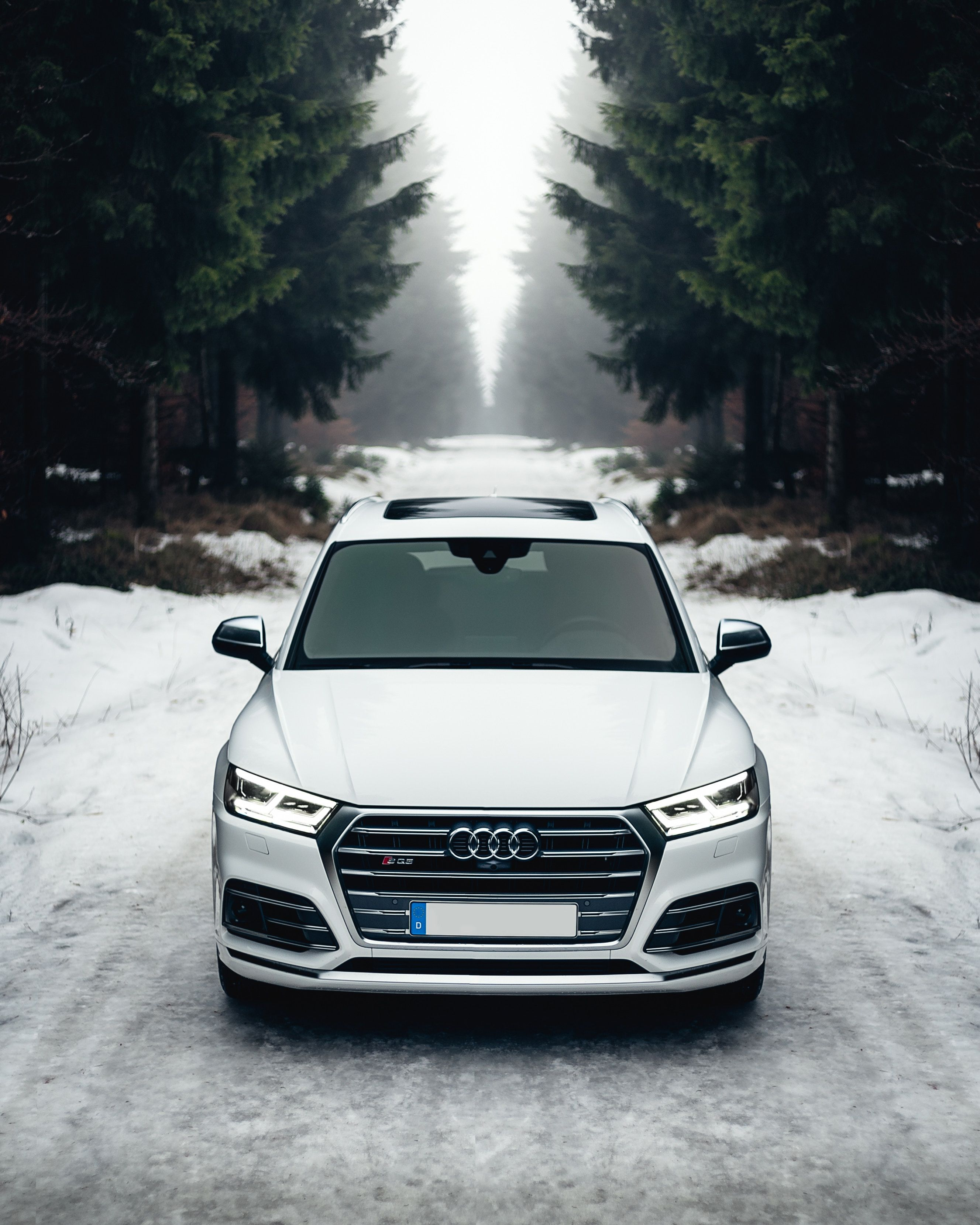 Altenberg Germany White Audi A8 On The Road Surrounded Of Trees
