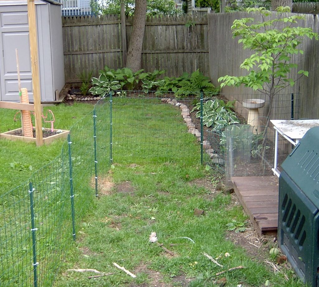 Dog fence and deck yard landscaping fences and yards for Garden designs for dogs