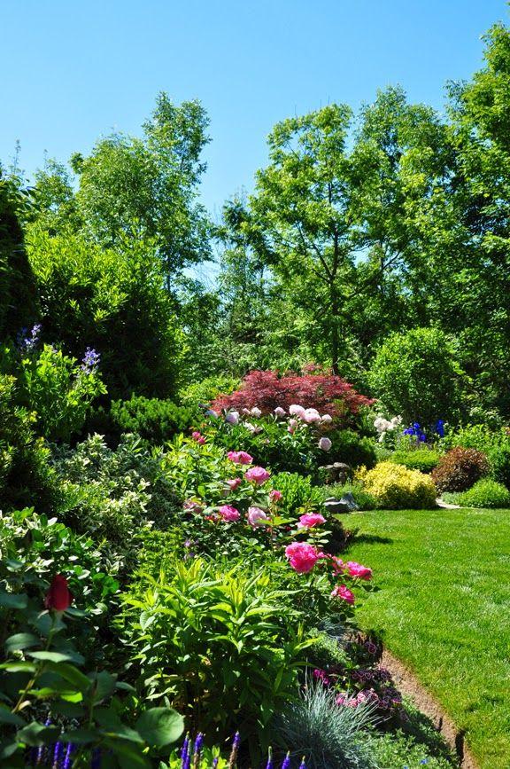 18c5b041def93ea46d5d4137376cc9e2 - Magnolia Plantation And Gardens Dog Friendly