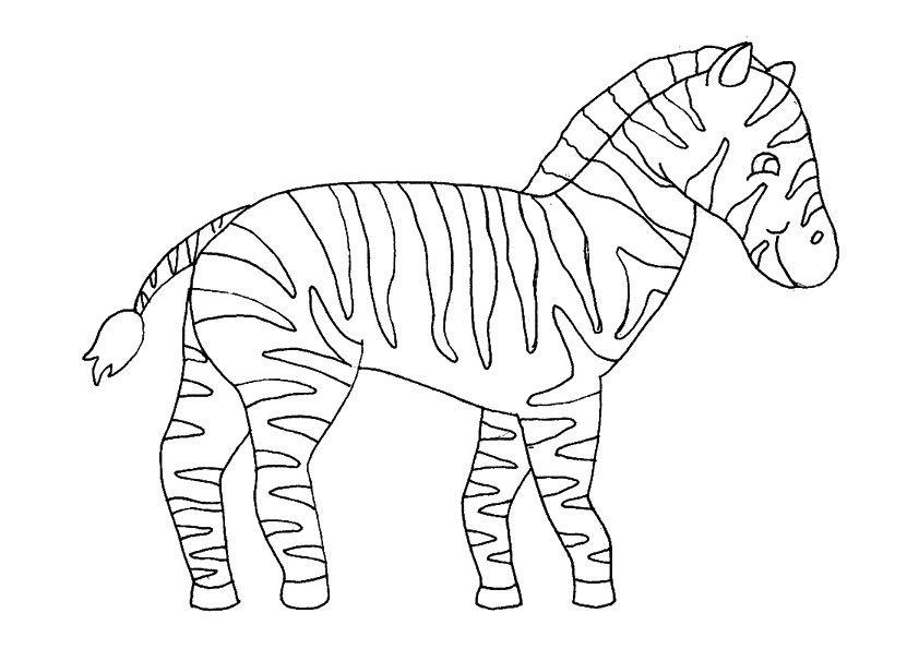 Zebra Para Colorir 5 Desenho De Zebra Colorir Zebra