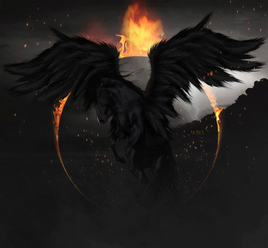 20 Fire Pegasus Pictures And Ideas On Weric