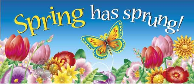 Image result for Spring begins