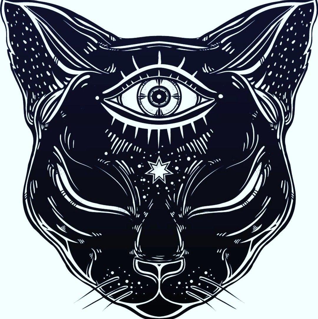 Deixa Pra Tras O Que Nao Te Leva Pra Frente Boa Noite Bruxa Bruxas Bruxaria Bruxariamodernawicca Em 2020 Desenho De Gato Preto Gatos Egipcios Tatuagem Gato Preto
