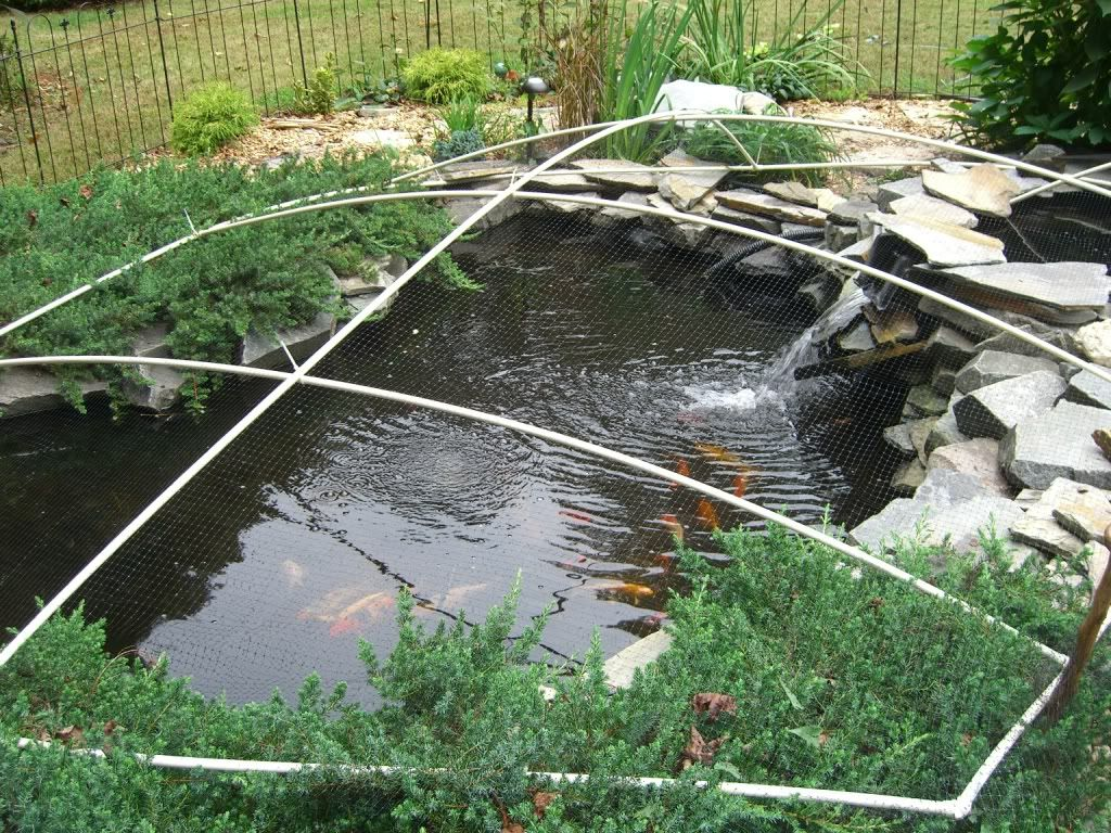 DIY Pond Winter Leaf Cover Build | Water Gardens, Ponds, \u0026 Pools ...
