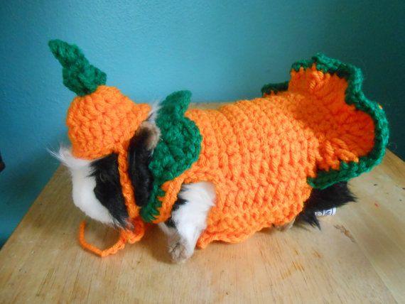 Guinea Pig Sweater Dress Guinea Pig Clothes Pumpkin