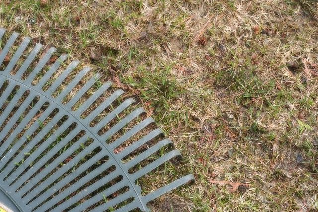 Dethatching A Lawn Vs. Lawn Aeration Service: What's Best For Your Property?