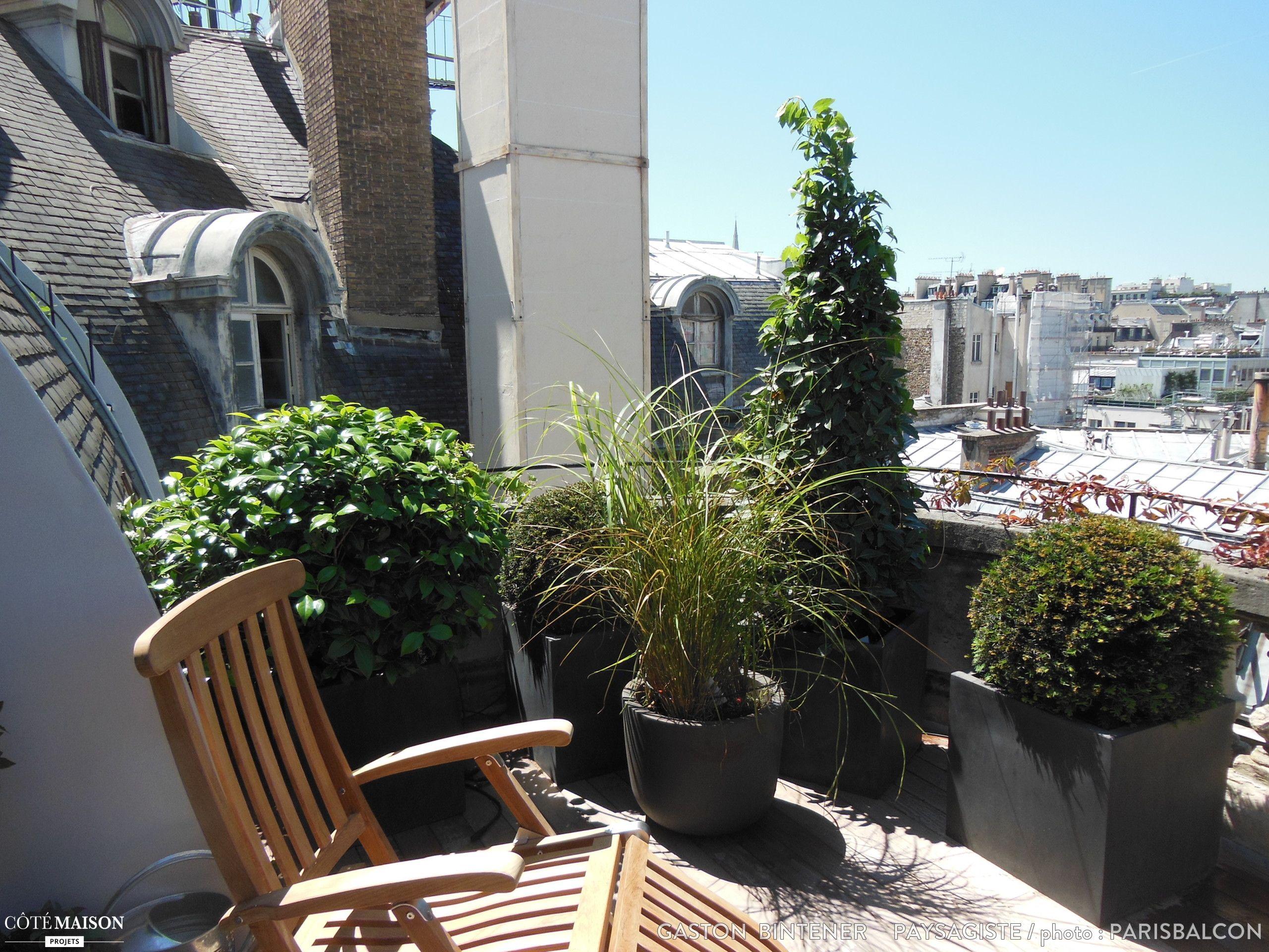 Une terrasse sur les toits verdoyante et ensoleillé Il ne reste