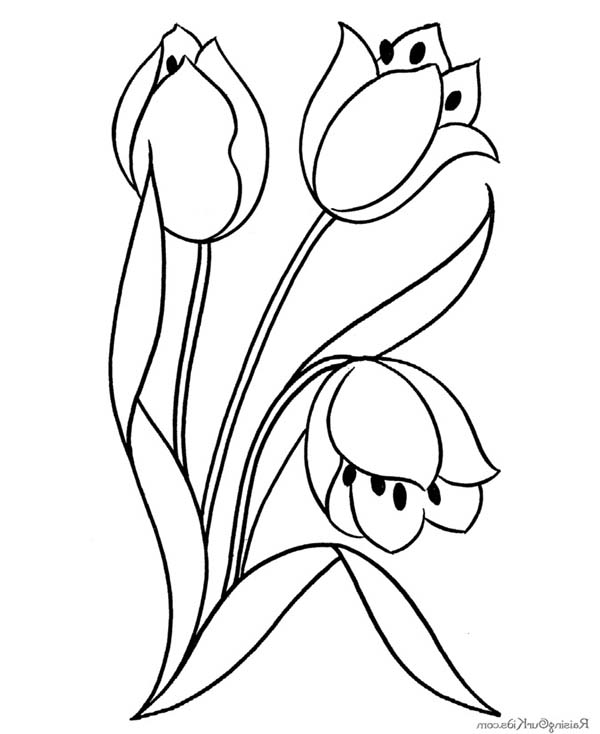 Flower Blooming Coloring Page Download Print Online Coloring Pages For Free Color Nimbus Cartoon Flowers Flower Coloring Pages Coloring Pages