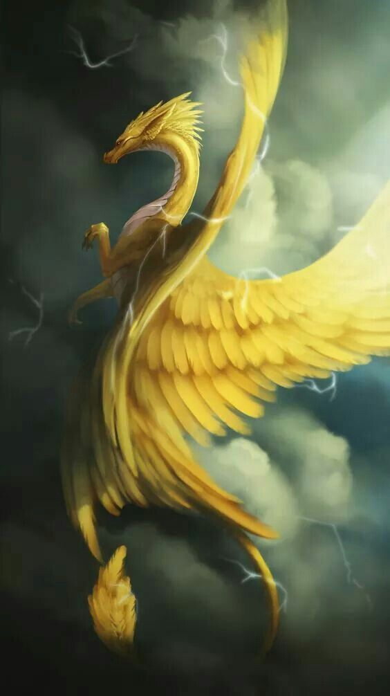 Yellow Dragon | Dragons and other creatures in 2019 ...