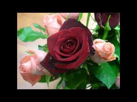 يا ريحة الورد فوحى ولأغلى الناس روحى صباح الخير Youtube Morning Images Romantic Love Quotes Flowers