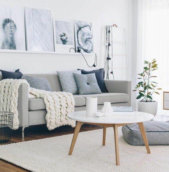 D co salon gris 88 super id es pleines de charme salon for Deco originale salon