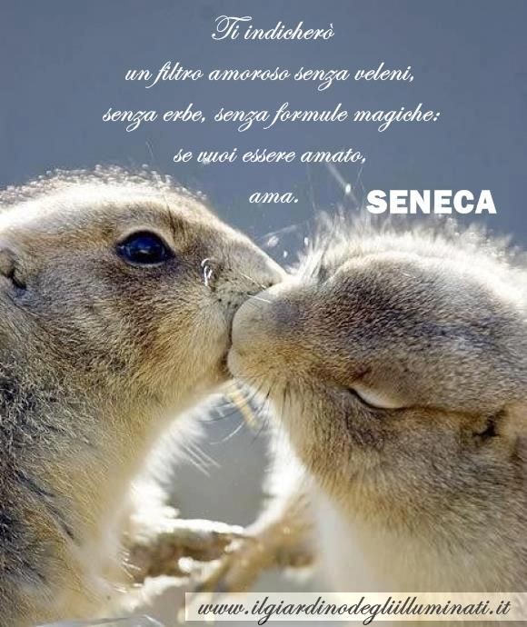 If you wanna be loved... LOVE  Seneca