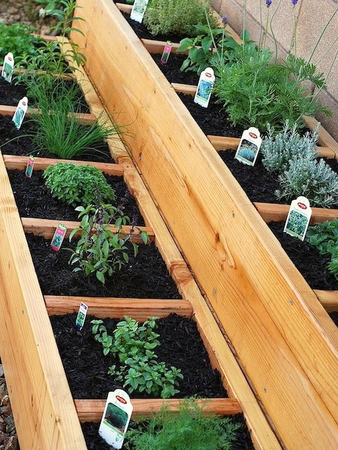 Beau Spring Dreaming: DIY Herb Garden Ideas