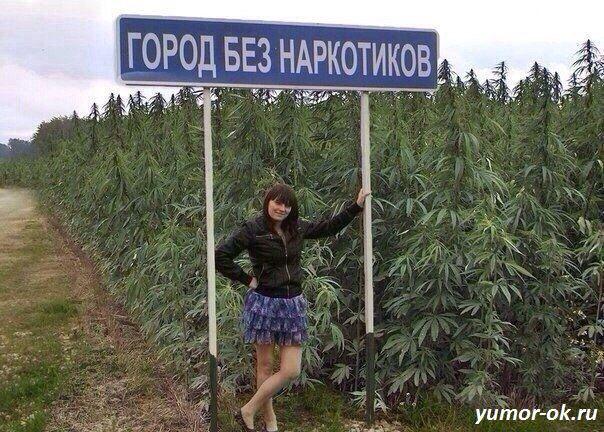 таджикистан марихуана