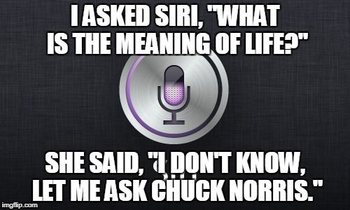 Siri: The Meaning Of Life