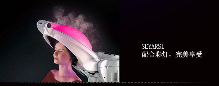 Deluxe Edition O3 Micro Mist Hair Steamer Care Processor Treatment Equipment