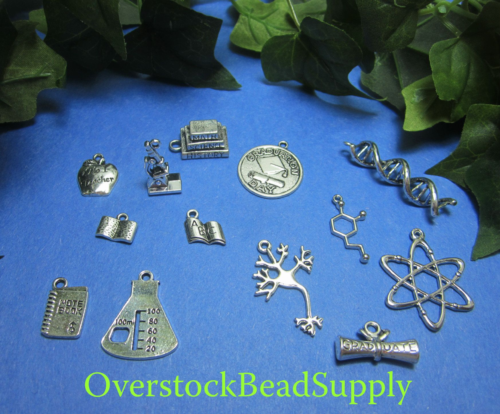 Back to school charm collection college pendants science charms dna back to school charm collection college pendants science charms dna brain cell molecule beaker books notebook graduation 13 pieces 9036 mozeypictures Image collections