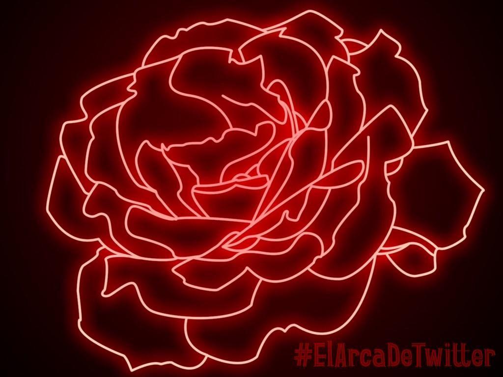 Iz Eadt1015 100k On Twitter Neon Signs Red Aesthetic Neon